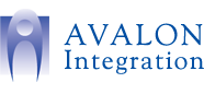 avalon integration warehouse automation solutions for erp wms and scm